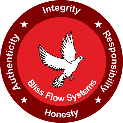 Bliss Flow Systems (India)